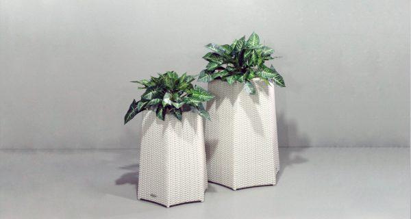 Hexagonal Planters