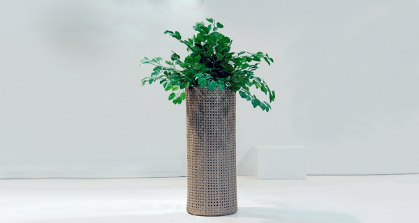 Ladepa Planters Tall