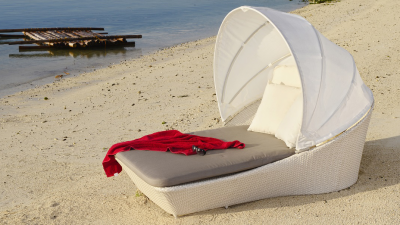 Sleeper Daybed With Canopy