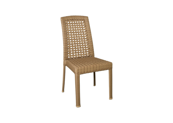 Caryl Side Chair
